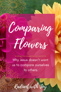 Comparing Flowers