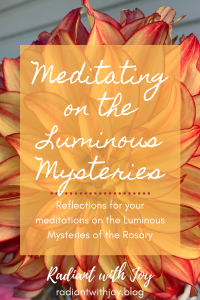 Meditating on the Luminous Mysteries: Reflections for your meditations on the Luminous Mysteries of the Rosary