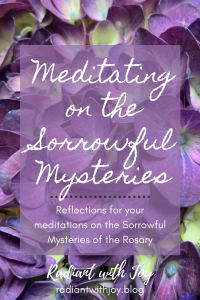 Meditating on the Sorrowful Mysteries: Reflections for your meditations on the Sorrowful Mysteries of the Rosary