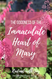 The Goodness of the Immaculate Heart of Mary