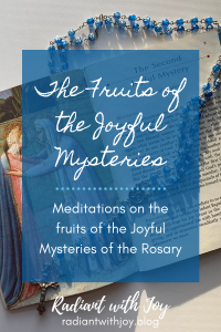 The Fruits of the Joyful Mysteries